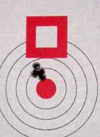 100 yard target shot with factory Hornady load with 32gr V-Max bullet.
