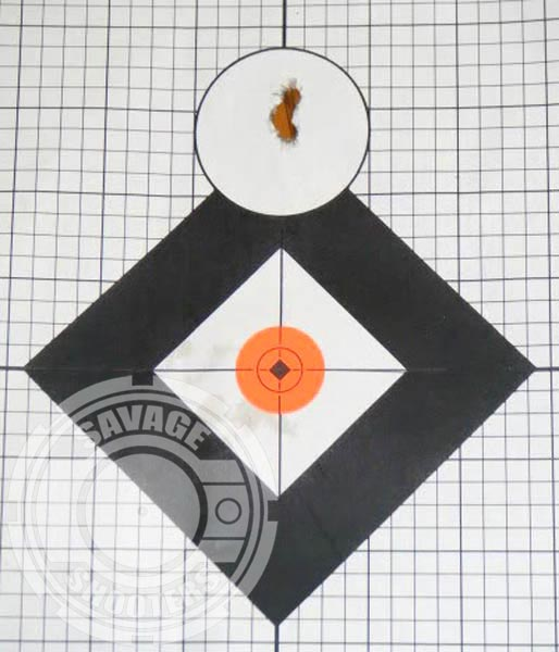 Sub MOA groups were easily attained and repeated at 100 yards once I got consistent with my hold on the stock.