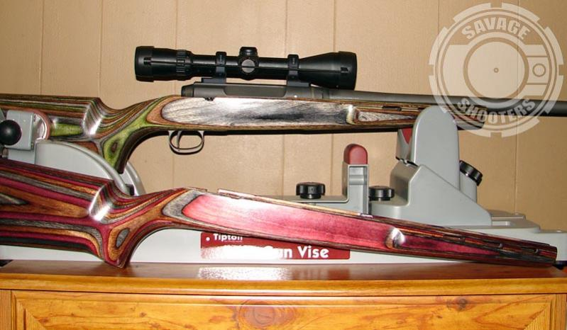 Stock options for savage axis