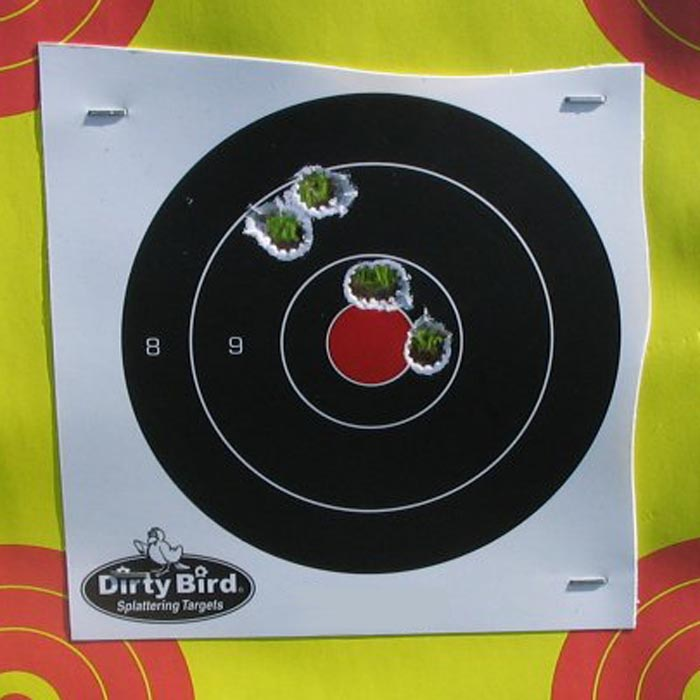 """Group shot with Hornady SST 2-3/4"""" saboted slugs at 75 yards."""